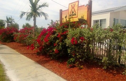 Fort Pierce/Port St. Lucie KOA | Camping in Florida | KOA Campgrounds