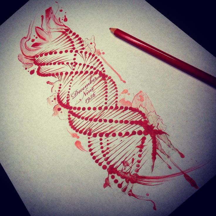 DNA sketch drawing