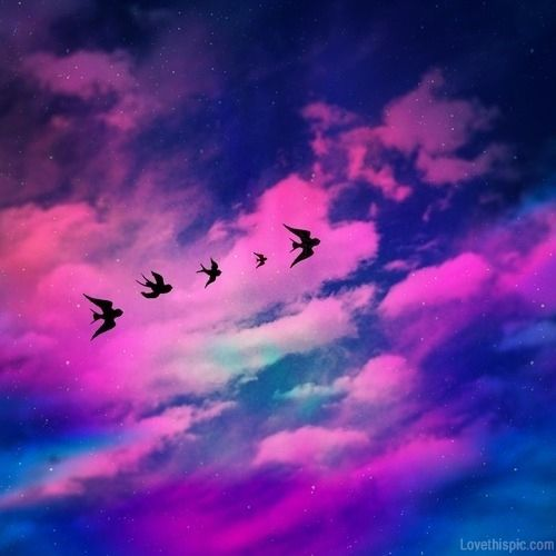 Flying birds colorful sky clouds stars birds | Pretty ...