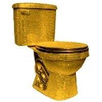 1000 id es sur le th me comment d boucher des toilettes sur pinterest d bou - Truc pour deboucher les toilettes ...