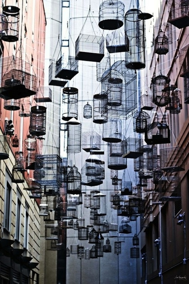 Birdcage Ally, Sydney