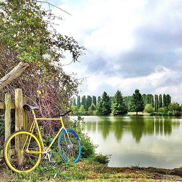 Ferrara, Parco Bassani - Instagram by @Nancy Fabbro, , Ferrara province, Emilia Romagna region Italy