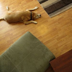 90 Best Images About Flooring Blogs Articles On