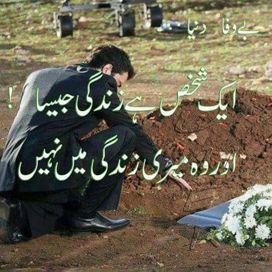 Fathers Day Quotes From Daughter In Urdu: 719 Best Images About QUOTS AND SAYINGS**** On Pinterest