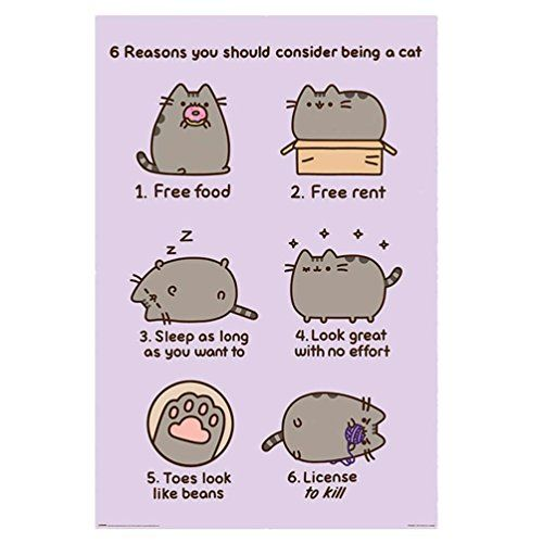 Pyramid International Reasons to Be a Cat Pusheen Maxi Poster, Plastic/Glass, Multi-Colour, 61 x 91.5 x 1.3 cm