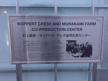 Japanse vestiging Koppert Cress geopend tijdens tuinbouwmissie | Koppert Cress Benelux