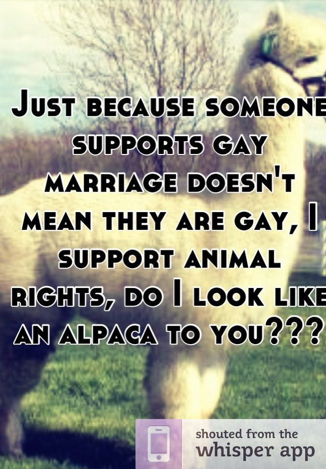 Is Gay Marriage Right Or Wrong 31