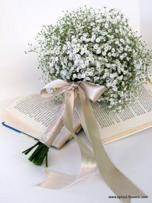 kytka nevěstin závoj