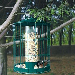 Coopers of Stortford Large Seed Bird Feeder + free Matching Large Peanut Feeder