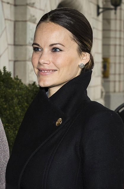 Princess Sofia of Sweden attends a lunch on the theme of social entrepreneurship and sustainability at Hotel Diplomat on November 29, 2016 in Stockholm, Sweden.