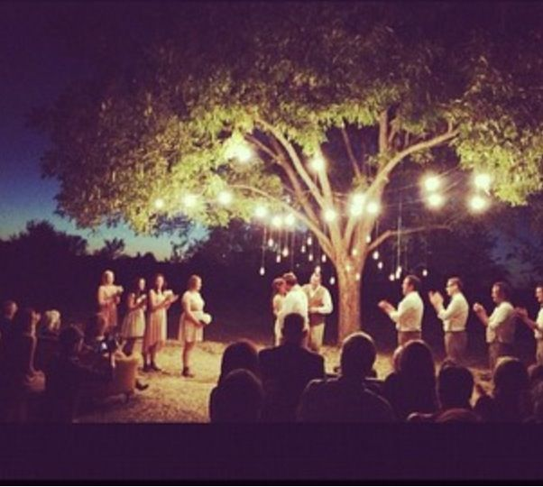 Fall Vintage Evening Wedding. Perfect pecan tree in our back pasture.