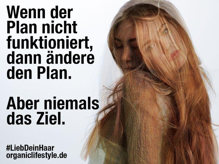 Wenn der Plan nicht funktioniert, dann ändere den Plan.