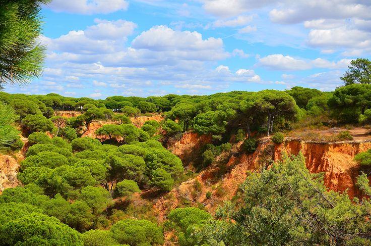 Albufeira coast - null