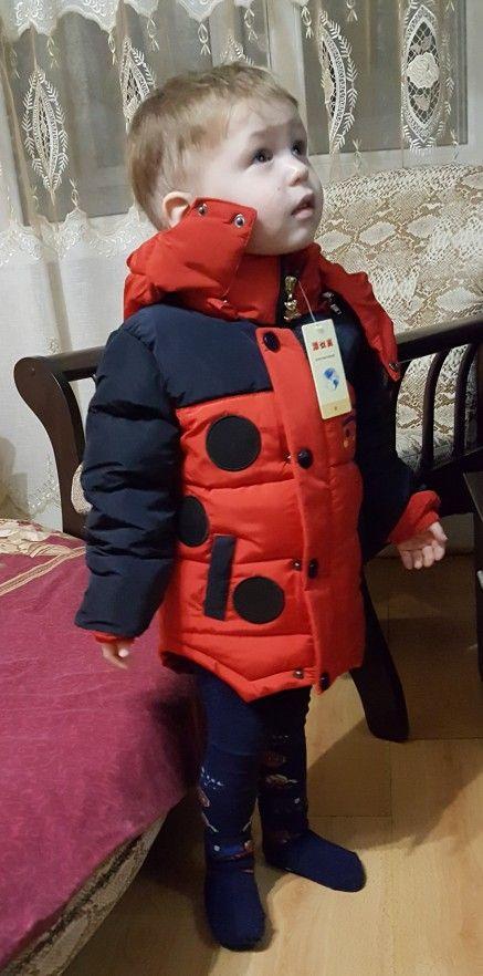 5958278e0 Bees Winter Jacket For Boys