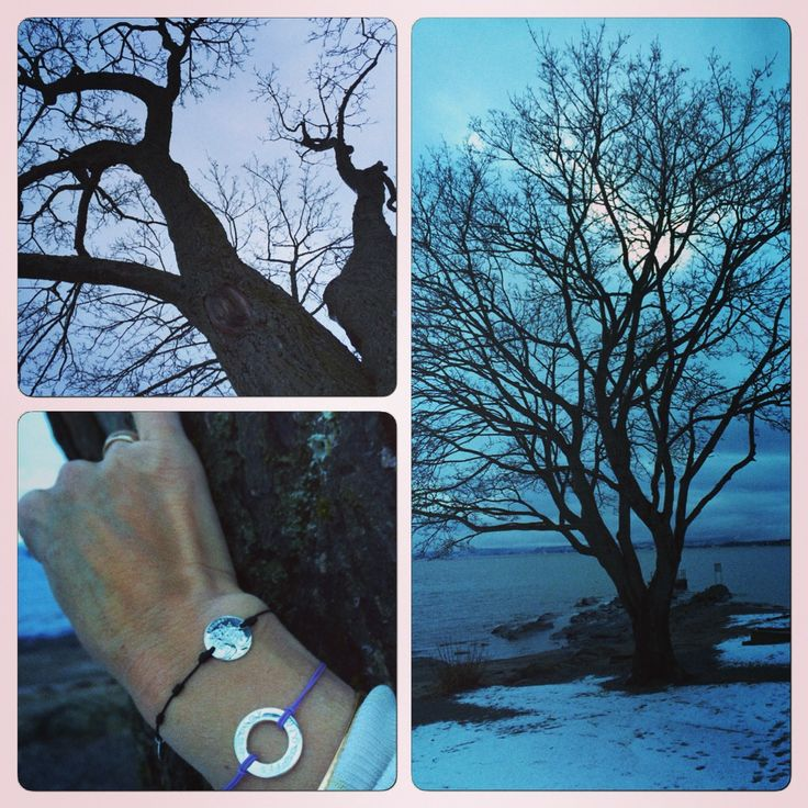 The maple tree form Bygdøy in Oslo, this is the tree designed for this special bracelet. Lots of colours silver or pure gold!! Quality. Affiliation. Community. Family