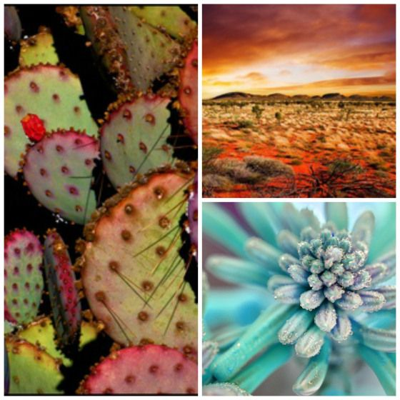 Arizona Hacienda Kitchen Cabinets: 17 Best Images About Southwest Living Room On Pinterest