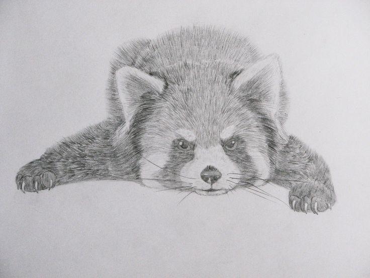 drawing by panda kiddie on deviantart