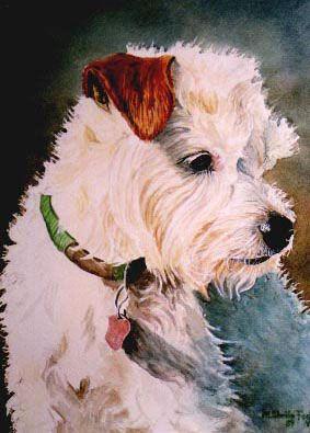 Dog portrait by shelia foster