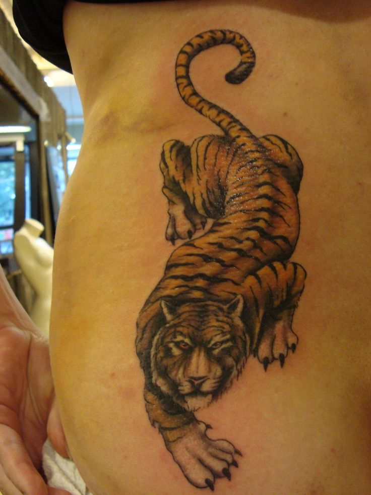 25 best ideas about tiger print tattoos on pinterest. Black Bedroom Furniture Sets. Home Design Ideas