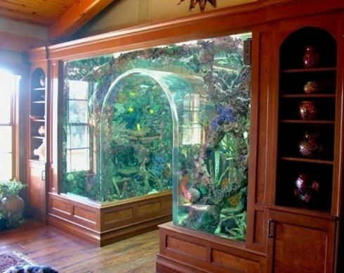the aquarium-hallway design i like!