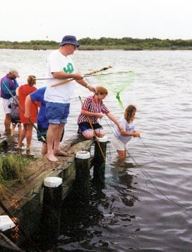 We do this in north carolina outerbanks - crabbing. Buy chicken legs and tie to a thin string.  Throw in the water, wait a few minutes and watch the blue crabs go for the piece.  Slowly pull string with the crab attached to the chicken and voila!!!