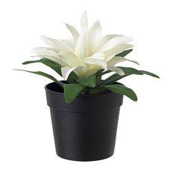 Kunstblumen & Kunstpflanzen günstig online kaufen - IKEA