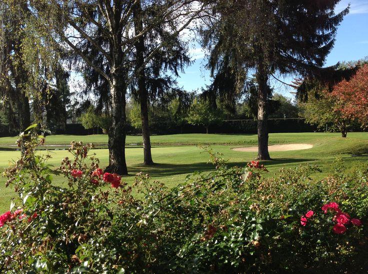 Panorama Golfclub, Varese, Italy - with #liadesign www.liadesign.it    #golfclub  #autumn #golf