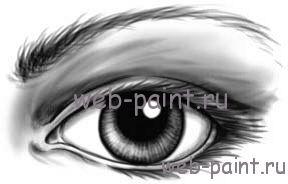 человеческий глаз 8