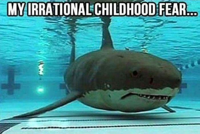 This actually just gave me chills. I remember being so paranoid about sharks when swimming anywhere as a kid.
