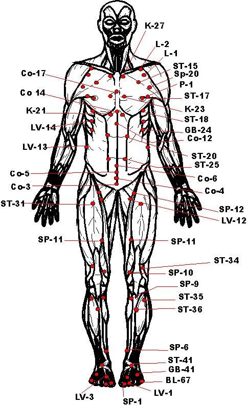 Vital pressure points picture arts martiaux pinterest for Arts martiaux pdf