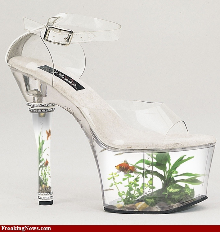 40 best cool fish tanks images on pinterest fish tanks for Fish tank shoes