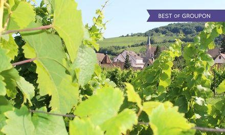 Alsace: 1 à 3 nuits avec petit déjeuner, dégustation de vins et menu en option à l'hôtel-restaurant Le Kastelberg pour 2