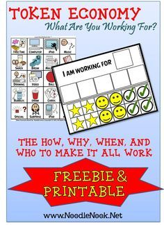 Token Economy in LIFE Skills- What Are YOU Working For? http://www.NoodleNook.Net