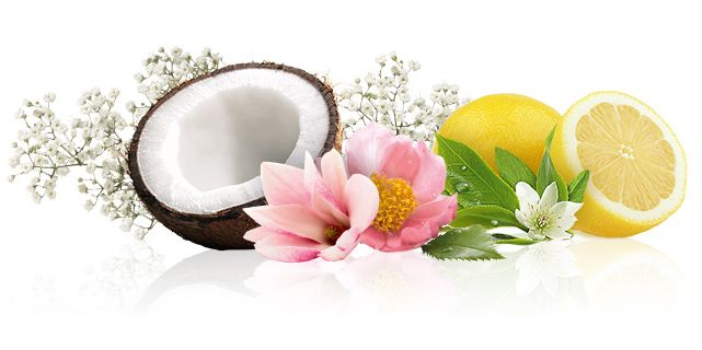 Yang Perlu Anda Ketahui Tentang Wewangian | Oriflame Cosmetics