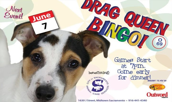 Thursday June 7th support City of #Sacramento Animal Care Services at Drag Queen Bingo at Hamburger Patty's