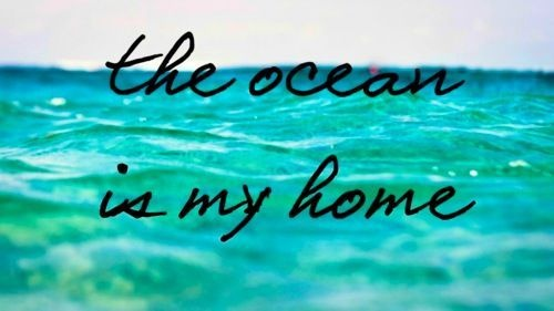 Ocean is my home: Pink Summer, Beach Stuff, The Ocean, At The Beach, Sweets Life, Beach Bum, Ocean Life, Beach Life, Ocean Quotes