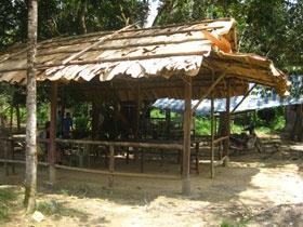 Trekking & Camping (also chalet stay) at Endau Rompin National Park ~ Kampung Peta Entrance , Johor   Malaysia : journeymalaysia.com