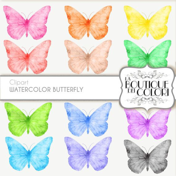 50% OFF Butterfly clip art with detailed wings, digital watercolor clipart, drawing, illustration,print, printable, download commercial use