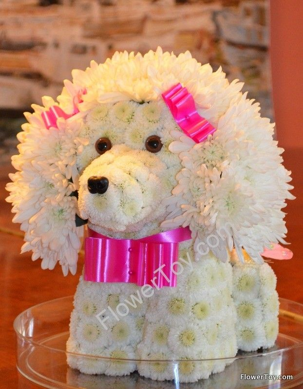 Poodle. Dog made from fresh flowers.