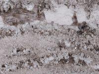 Granite & Marble « TCESTONE Bianco Anitco