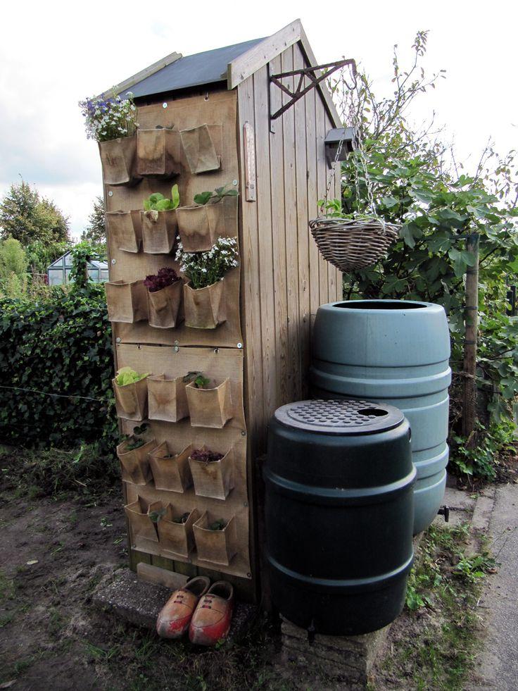 Turned my garden tool shed at the allotment into a vertical (vegetable) garden.  Heb van mijn  (moes) tuinkast een vertikale (groenten) tuin gemaakt