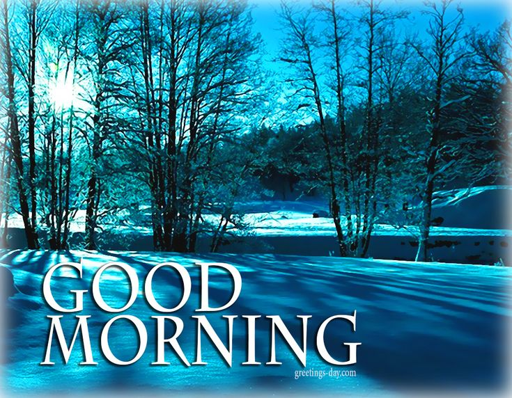 Good Morning - Best Ecards, Photos & Messages. #EverydayEcards, #GOODMORNING, #GreetingsPics http://greetings-day.com/good-morning-best-ecards-photos-messages.html