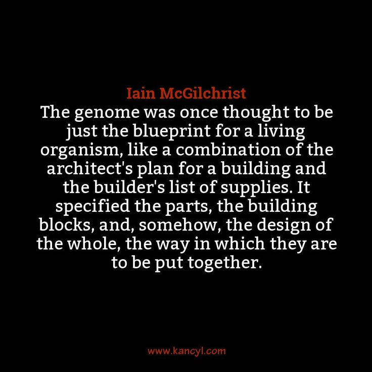 """""""The genome was once thought to be just the blueprint for a living organism, like a combination of the architect's plan for a building and the builder's list of supplies. It specified the parts, the building blocks, and, somehow, the design of the whole, the way in which they are to be put together."""", Iain McGilchrist"""