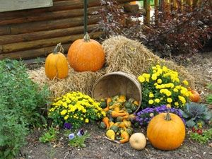 how to decorate a yard for a fall festival - Fall Outside Decorations
