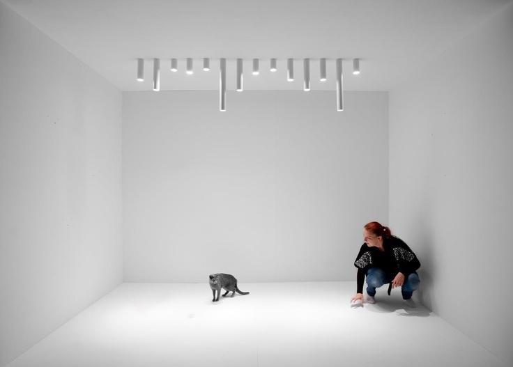 New updates of Qua lamps  #design