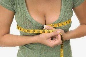 blog umum: Trik Membuat payudara tampak besar secara alami