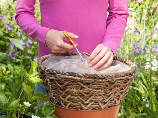 Learn how to plant and grow strawberries in hanging baskets with tips from HGTV Gardens. Great for patios or small gardens, these baskets are a creative way to save on space and grow delicious fruit. Click in for step-by-step instructions!