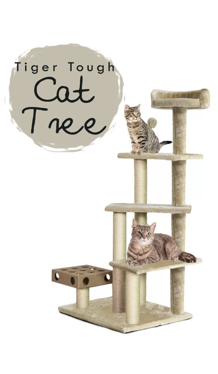 This Is A Tiger Tough Cat Iq Playground This Playground Includes Multiple Climbing Platforms Sis Best Interactive Cat Toys Diy Cat Tower Interactive Cat Toys