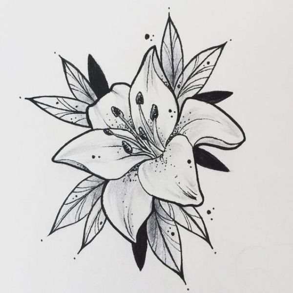 42 Simple And Easy Flower Drawings For Beginners With Images