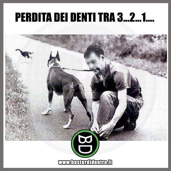 Siete pronti? #bastardidentro #perfettamentebastardidentro #denti www.bastardidentro.it